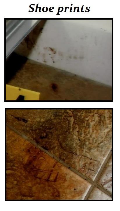 shoeprints